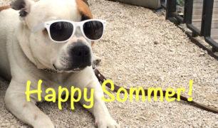 Happy-Sommer_05