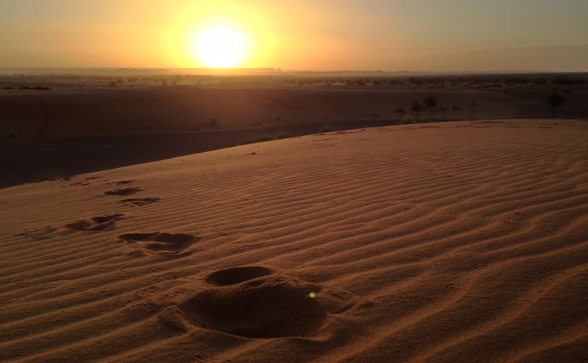 Sahara_14
