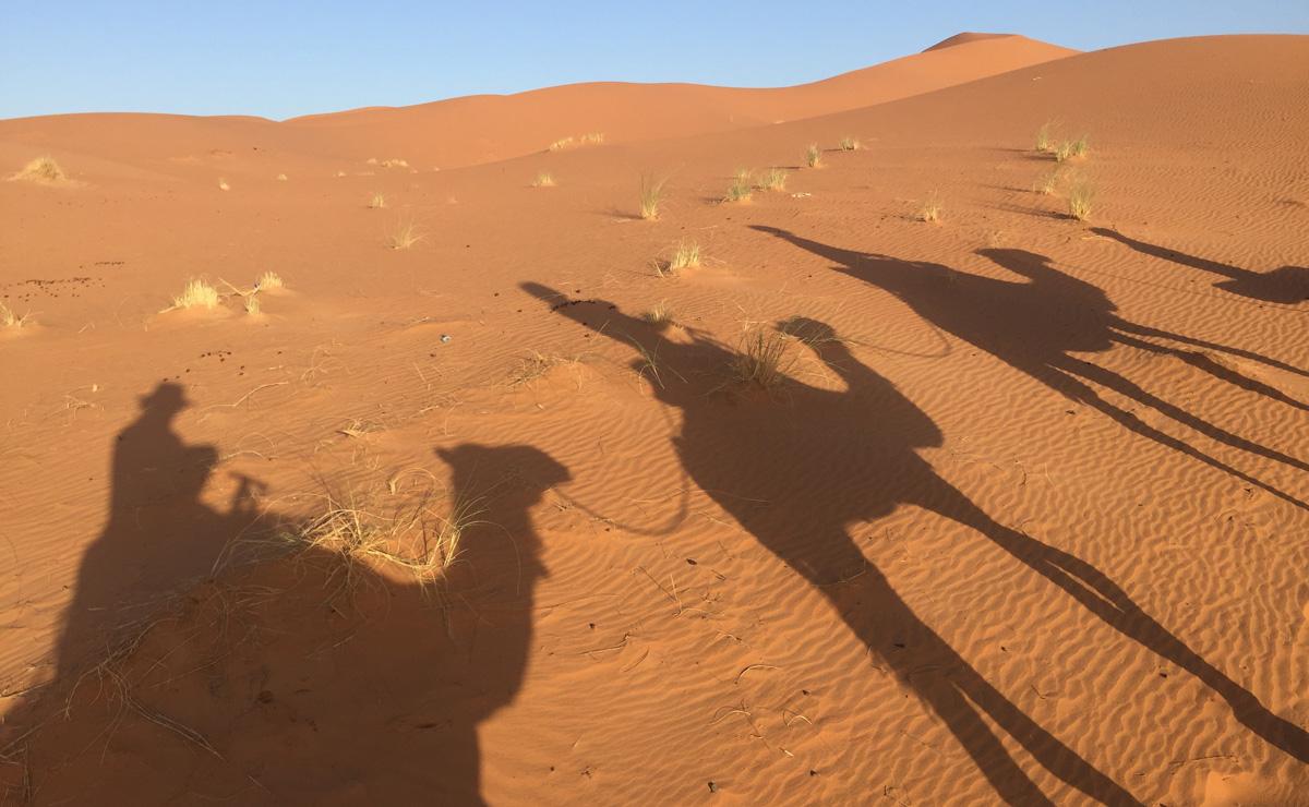 Sahara_28