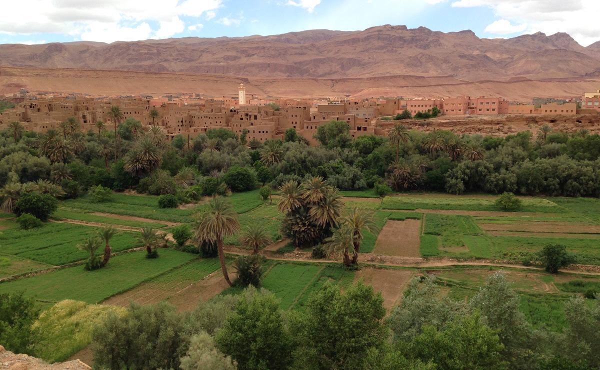 Sahara_36