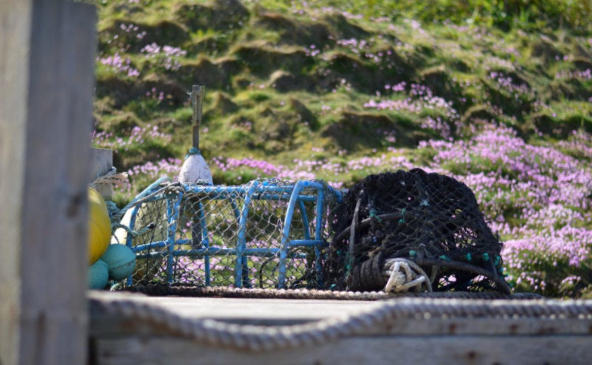 Krabben- und Hummernetze beim Petit Port